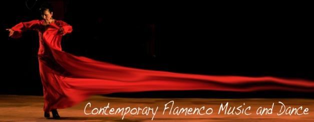 Flamusica & baile