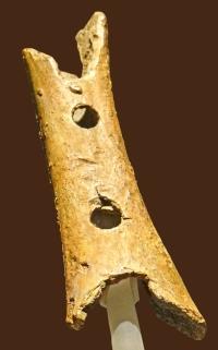 Flûte_ world's oldest known musical instrument_(Slovénie)