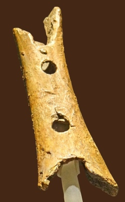 Flûte_ world's oldest known musical instrument_(Slovénie)
